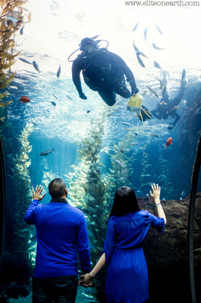 California Science Center Engagement-2243