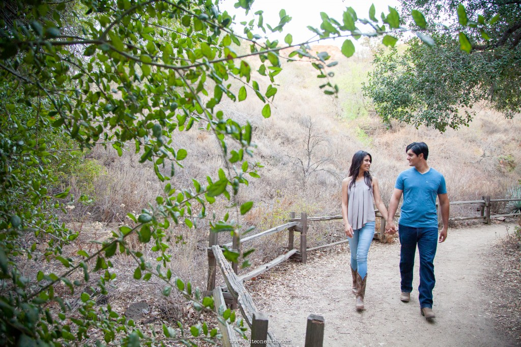 oak-canyon-anaheim-engagement-17