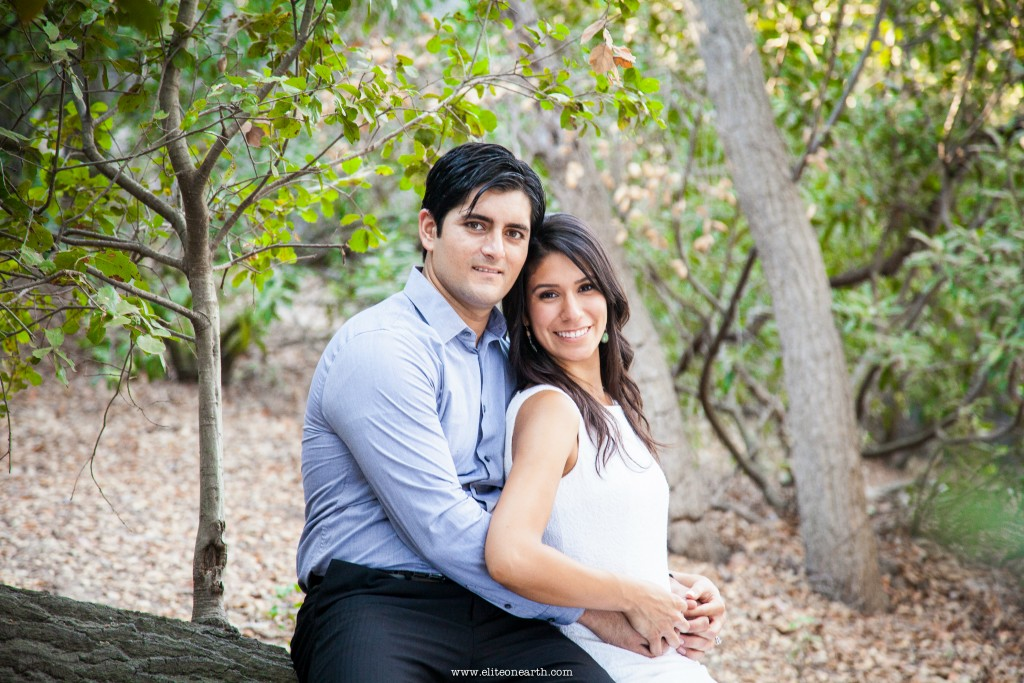 oak-canyon-anaheim-engagement-2