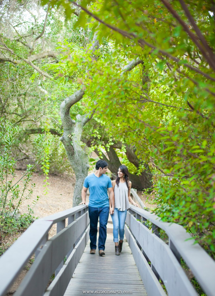 oak-canyon-anaheim-engagement-9